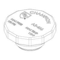 Champion Irrigation RK-41C Brass Anti-Siphon Cap